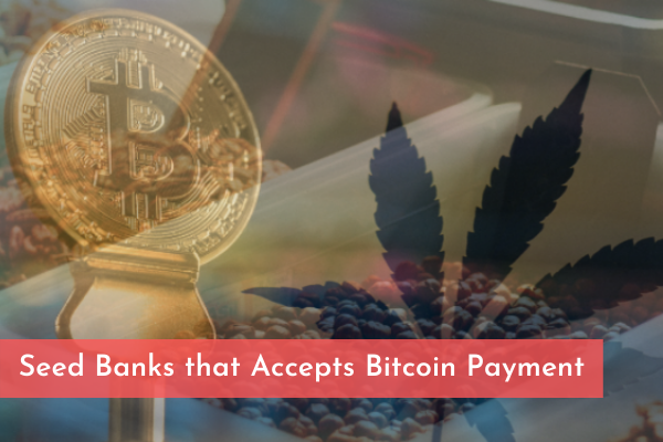 Seed Banks that Accepts Bitcoin Payment