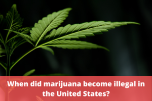 When did marijuana become illegal in the United States